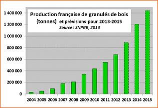 production france pellets granules 2013. Black Bedroom Furniture Sets. Home Design Ideas